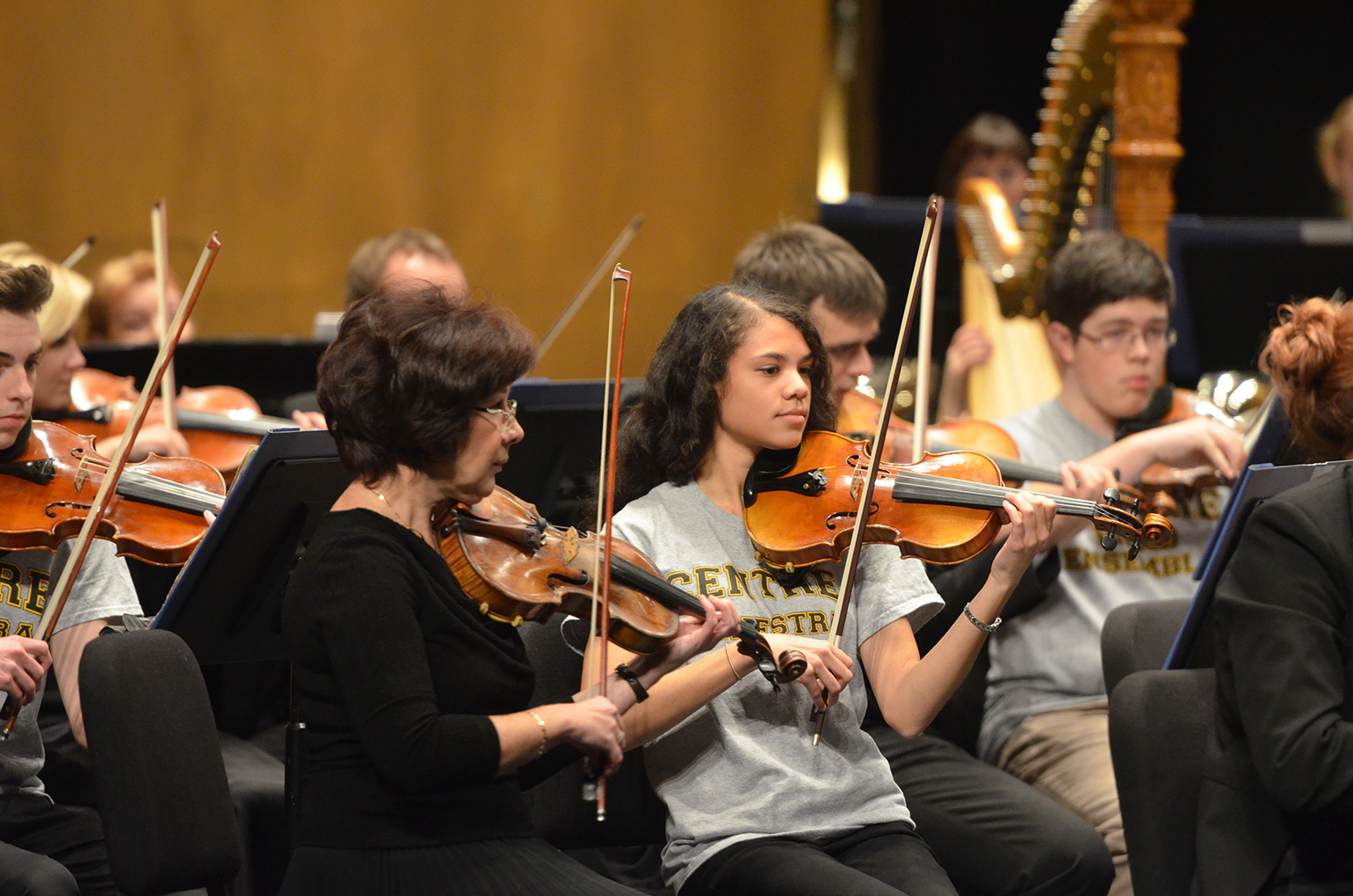 11072014 RSSO Centre Orchestra 034701 - Education